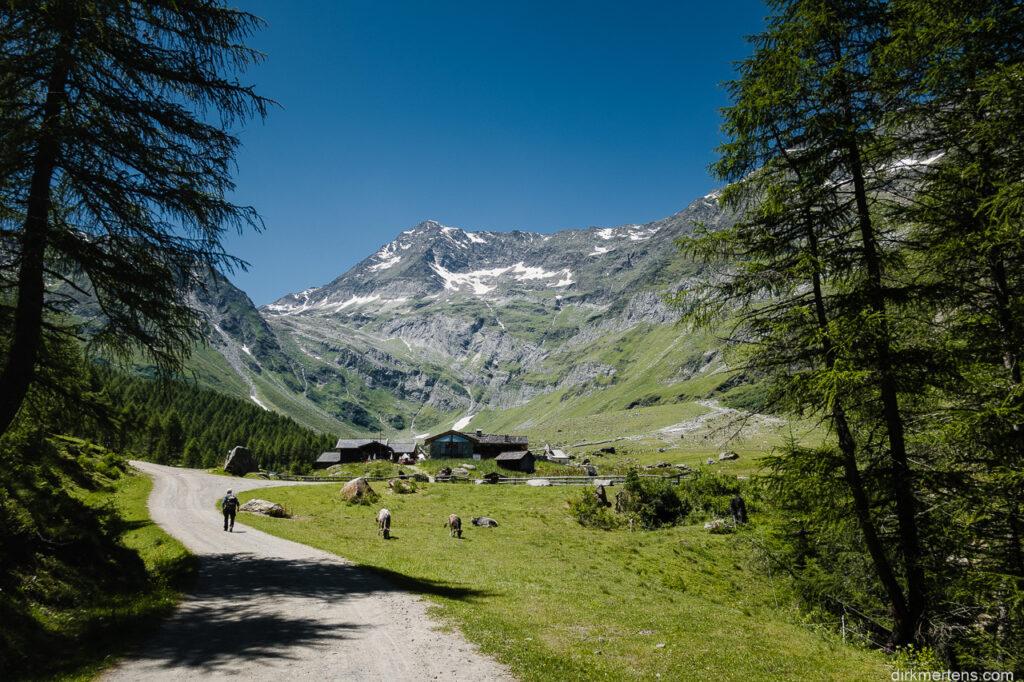 mit Hoher Wilde (3480m)
